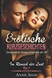 Im Rausch der Lust 30 erotische Kurzgeschichten Vol. 1: Unzensierte Sexgeschichten ab 18 !