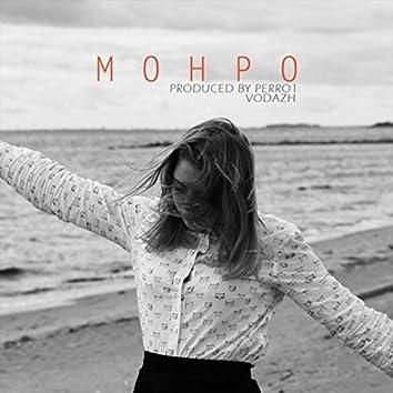Монро (Perro1 Mix)