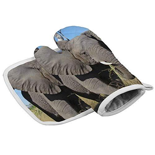 Wfispiy - Guantes de horno resistentes al calor de silicona