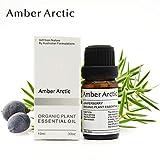AMBER ARCTIC Baya de Enebro Aceite Esencial Para Difusor, 100% Pura Terapia Orgánica de Plantas Frescas Baya de Enebro Oil 10Ml / 0.33Oz