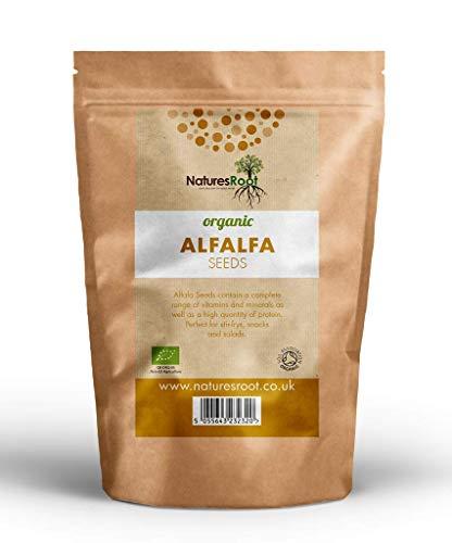 Natures Root BIO Alfalfa Samen 500g - Luzerne Keimsaat Superfood | Microgreen | Sprossen | Nicht GVO