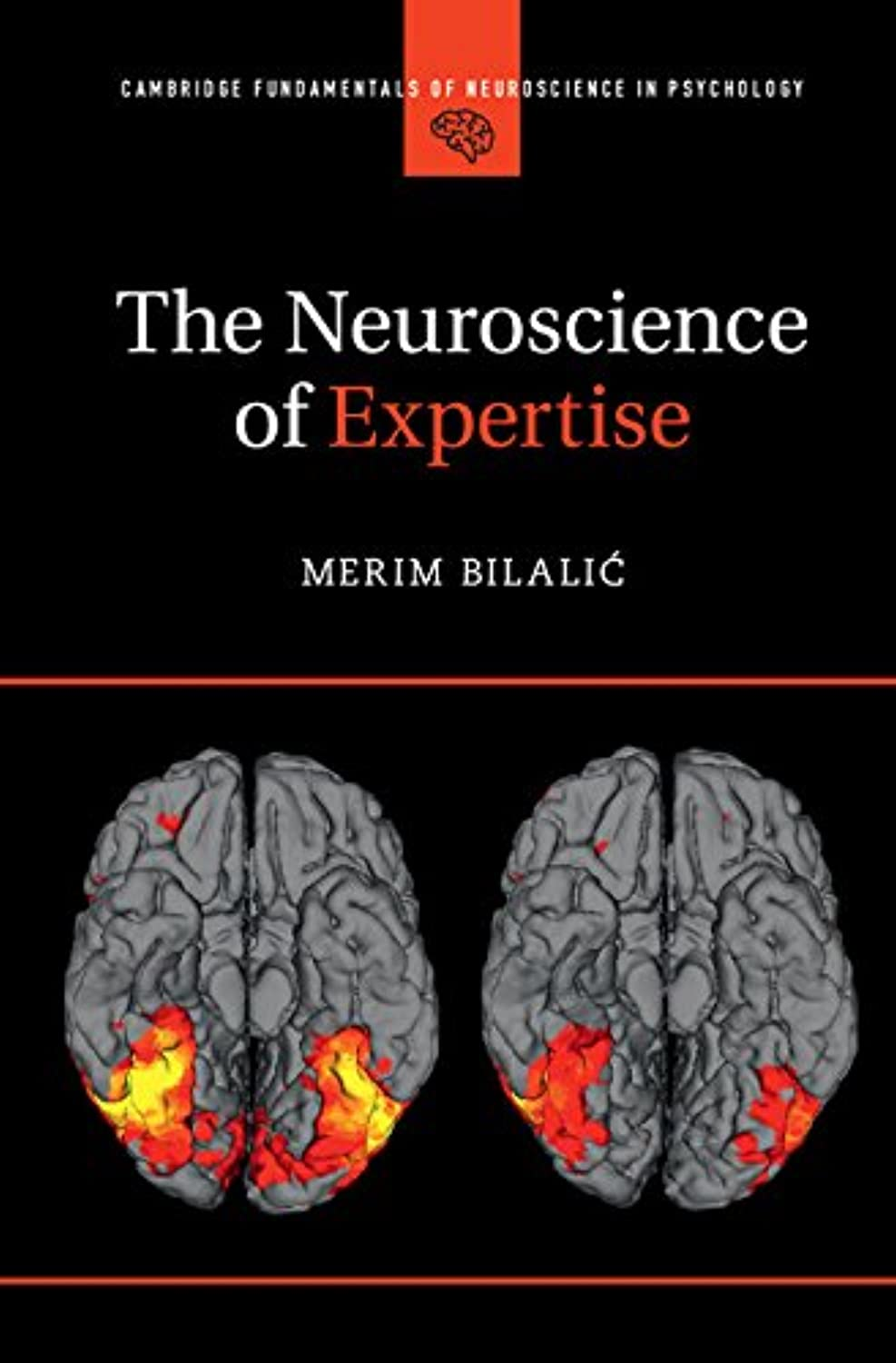 The Neuroscience of Expertise (Cambridge Fundamentals of Neuroscience in Psychology) (English Edition)