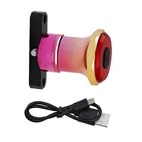 Lámpara De Detección Bicicleta Luz Trasera Inteligente USB Inducción De Freno Trasera Led Recargable Seguridad De La Bicicleta Inteligente (Oro Rosa)