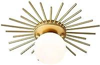 金属ガラスモダンなシーリングライト、25 cmフラッシュマウントペンダントライト、AC220V LED黄金の廊下のバルコニーのシャンデリア、リビングルームの照明用