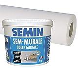 Semin A01541 Colle en Pâte pour Toiles de Verre Prête à l'Emploi, Seau de 10 kg et...