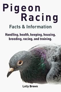 Best racing pigeon cage Reviews