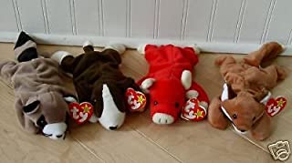 4 Ty Beanie Baby's; Snort the Pig, Dob 5-15-95, Ringo the Raccoon, Dob 7-14-95, Sly the Fox, Dob 9-12-96, Bruno the Dog, Dob 9-9-97