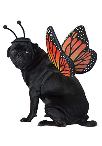 Pet Butterfly Costume Large
