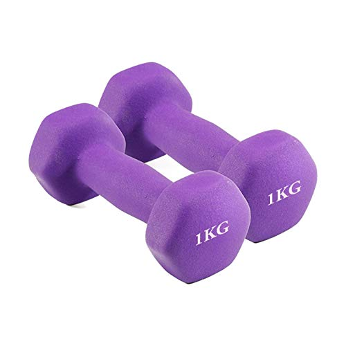 ZEL 2kg señoras Mancuernas Hexagonal pérdida de Peso Pesas Equipo Fitness Ejercicio Muscular Antideslizante Ejercicio Fitness Fitness 1.22 (Color : Purple)