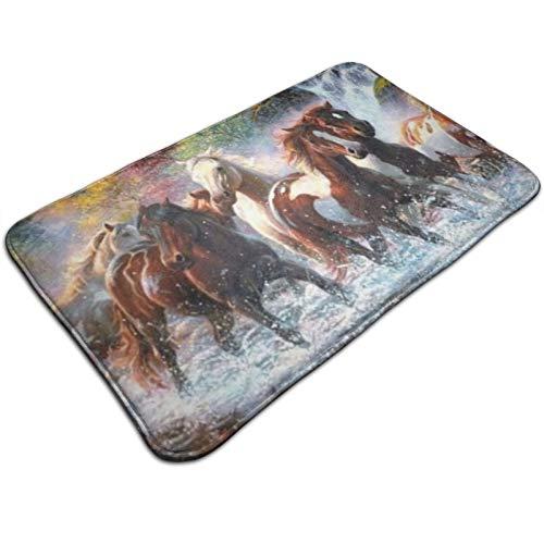 HaiYI-ltd - Zerbino per porta dei cavalli indiani nativi americani, tappetino per ingresso interno, antiscivolo, per portico, cucina, lavanderia, 49,5 x 80 cm
