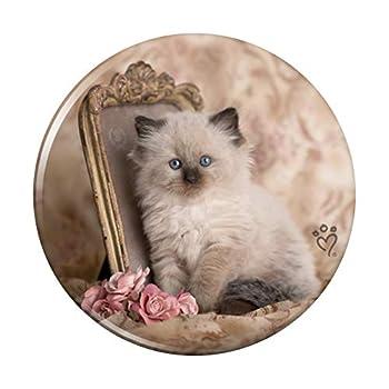 Ragdoll Tiffany Cat Kitten Victorian Roses Compact Pocket Purse Hand Cosmetic Makeup Mirror - 3  Diameter
