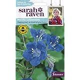 【輸入種子】 Johnsons Seeds Sarah Raven Brilliant for Bees & Butterflies Phacelia campanularia サラ・レイブン ビー&バタフライ ファセリア・カンパニュラリア ジョンソンズシード