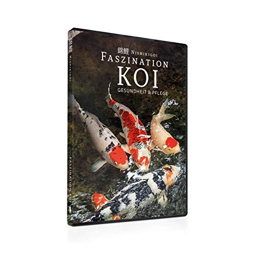 Faszination Koi   Gesundheit und Pflege - DVD Teil 3   Koi Ratgeber Film
