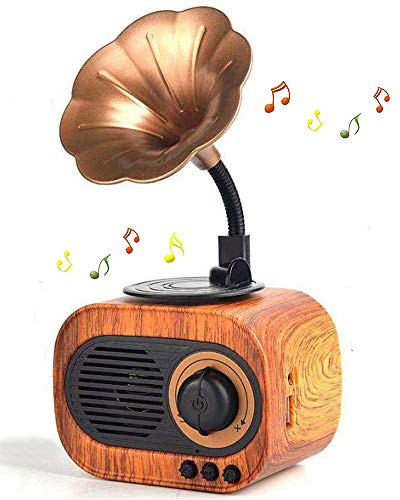 Retro Music Speaker Vintage Wireless Speaker Portable Outdoor Speaker Loud Stereo Sound Rechargeable Speaker Built in Mic Support Answering Calls USB TF Card AUX for Home Party Office