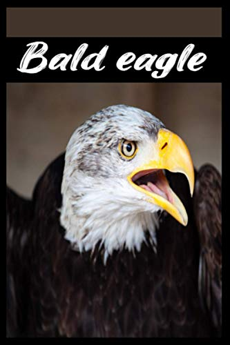 Bald Eagle: Sketchbook And Creative Journal, I Love Bald Eagle! Activity Book, drawing projects, and more for the Bald Eagle lover in you! | 6x9 in | With 120 Pages.