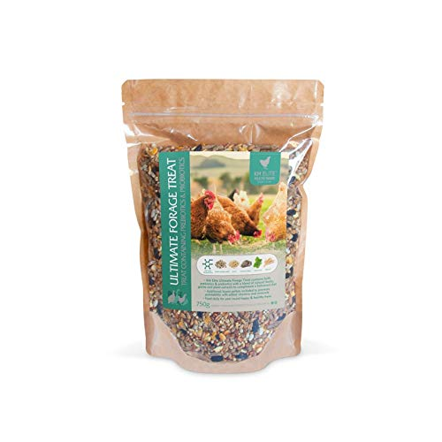 Ultimate Forage Treat | Chicken and Poultry Supplements | Long Term Health | Build Immunity | High Quality | Extremely Palatable (750g)