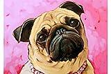 DIY Pintar por números Bonito Kit de Pintura al óleo de Bulldog por...