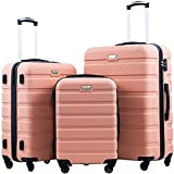 COOLIFE Luggage 3 Piece Set Suitcase Spinner Hardshell Lightweight TSA Lock 3 Piece Set (sakura pink)