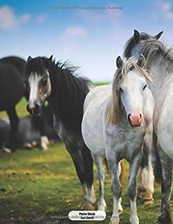 Photo-Stock Notizbuch: Pferde Weide Fohlen  Dotgrid Punktkariertes Notizbuch 150 Seiten liniert | A4 Format | mattes Softcover | dot grid