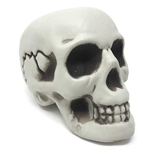 Modelo Figura de Cráneo Humano Decorativo - Ideal para Fiesta de Disfraces, Celebración de Halloween - Articulo, Figura de Calavera de Esqueleto - Accesorio de Adorno y Apoyo de Decoración