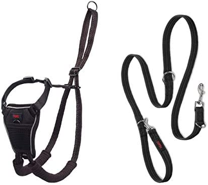 Halti No Pull Harness and Training Lead Combination Pack Stop Dog Pulling on Walks Includes product image