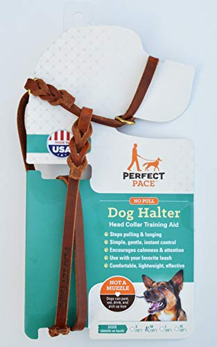 Perfect Pace Leather Halter (Large-Std, Tan)