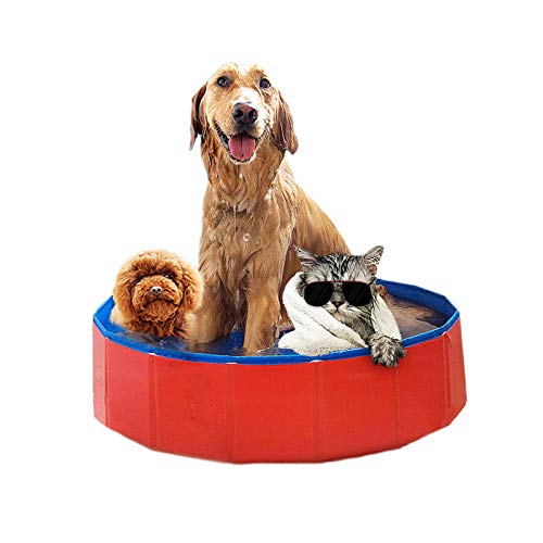 Price comparison product image PetsBark Foldable Hard PVC Plastic Dog Swimming Pool, Pet Bathtub,  Collapsible Kiddie Outdoor Swimming Pool for Pets Cats and Kids, Red X-Large (47 x 12)