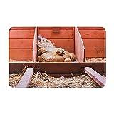 GKGYGZL Alfombras de baño Antideslizantes,Foto de cría de Animales de Granja con gallina ponedora incubando Dentro de la Jaula y alfombras de baño de Felpa Extra Suaves y Lavables para Ducha
