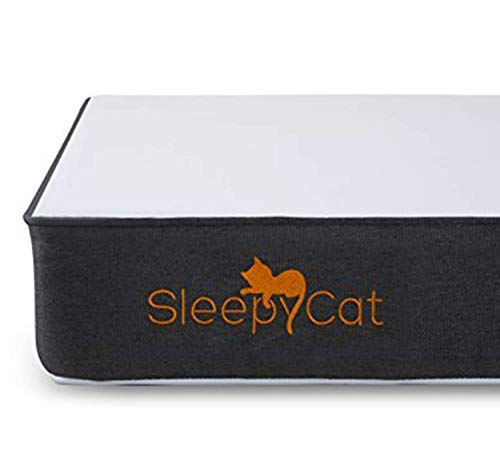 SleepyCat 6 Inch Orthopedic Memory Foam Queen Size...