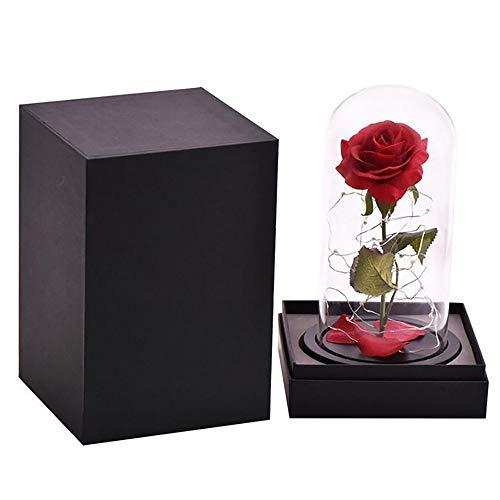Sunsbell La Bella E La Bestia Rosa, Rosa Roja Luz LED Cúpula de Cristal Base de Madera Negro, Regalos Románticos para Mamá/San Valentín/Boda/Aniversario/Navidad