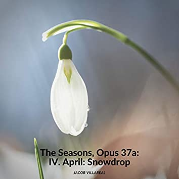 The Seasons, Op.37a: IV. April: Snowdrop