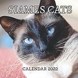 Siamese Cats Calendar 2022: 12-Month Calendar, Cute Gift Idea For Siamese Cat Lovers, Women & Men