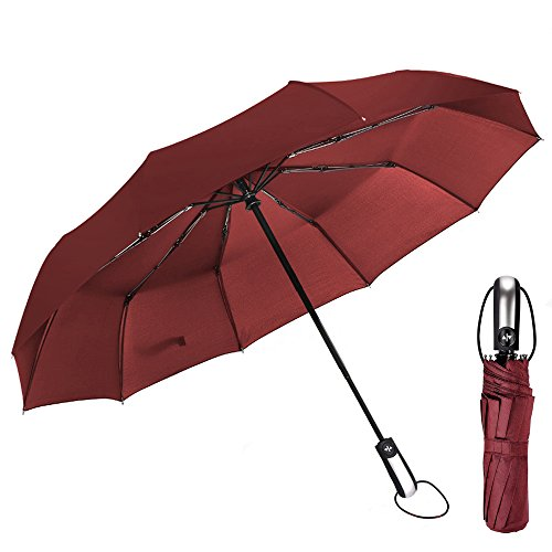 HH HOFNEN Windproof Travel Umbrella Auto Open Close Folding Umbrella 10 Fiberglass Ribs Unbreakable (Burgundy)