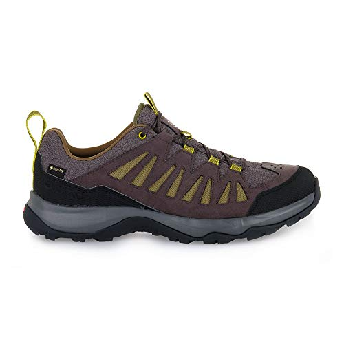 SALOMON Shoes EOS GTX