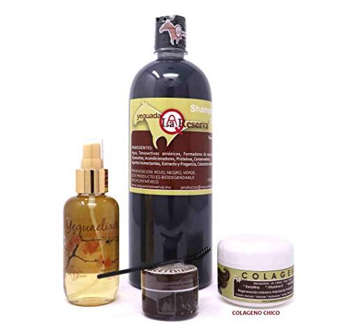 Shampoos Rapunzel marca VAM productos