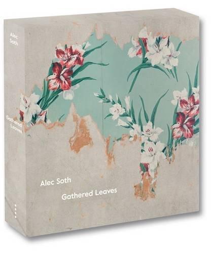 Alec Soth Gathered Leaves