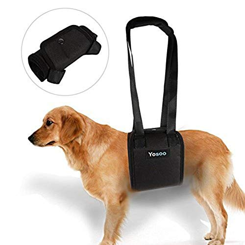 Yosoo Portable Dog Lift Support Harness - Helps Dog with Weak Front Or Rear Legs Stand Up, Walk, Get Into Cars, Climb Stairs for Disable, Injured, Elderly Pet (M)