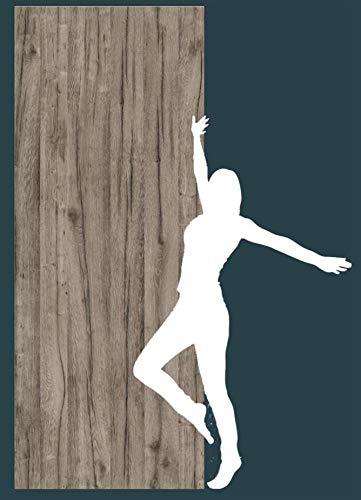 Fliesenlos und Fugenlos Dekorplatte Wetter Eiche Wandverkleidung Rückwand Fliesenersatz Fliese 2550x1000x3 mm Duschrückwand Alu Feinstein Dusche Wandbild Wandtattoo Badezimmer Holzoptik Altholz