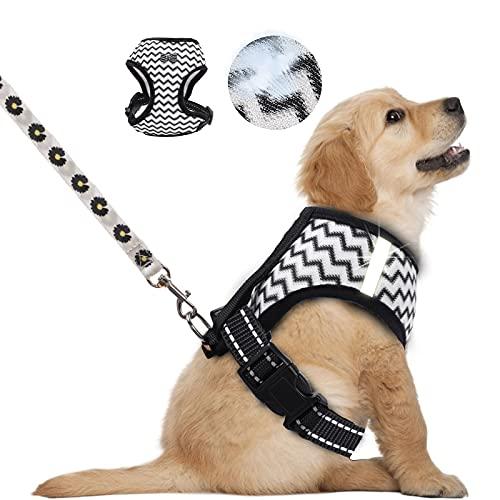 Fuzilin Hundegeschirr und Leine für Spaziergänge, atmungsaktiv, reflektierende Streifen, 2-in-1 mit Leine, einfache Kontrolle, weiches verstellbares Geschirr für kleine, mittelgroße und große Hunde und Katzen
