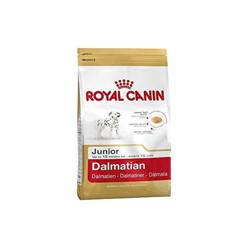 ROYAL CANIN Dalmatian 25 Junior 12 kg, 1er Pack (1 x 12 kg)