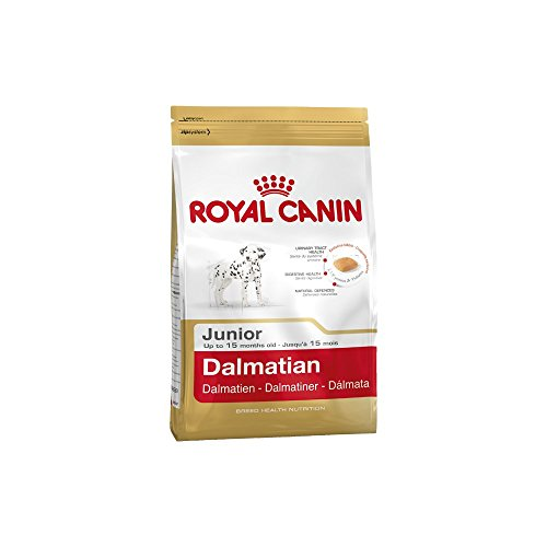 ROYAL CANIN Dalmatian 25 Junior 12 kg, 1er Pack (1 x 12 kg)