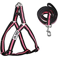 ColPet Easy Adjustable and Durable Walk Dog Harness