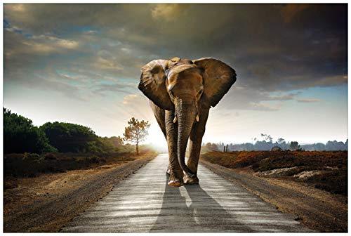 Wallario Acrylglasbild Elefant bei Sonnenaufgang in Afrika - 60 x 90 cm in Premium-Qualität: Brillante Farben, freischwebende Optik