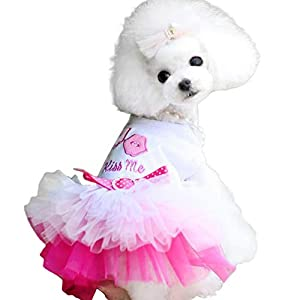 Blackzone Summer Pet Dog Puppy Lip Dress Clothes T-Shirt Breathable Lace Costume Pink XS
