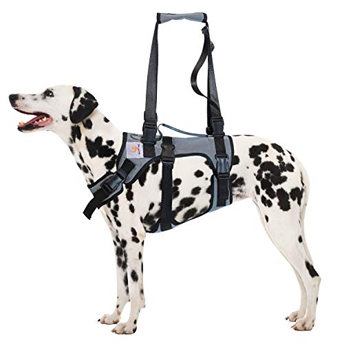 PET FRIENDZ Dog Lifting Harness for Front and Rear Legs - Dog Sling for Front and Back Legs, Rehabilitation Sling Harness, Dog Lift, Hip Support Harness to Help Lift Dogs Front and Rear - Large Breed