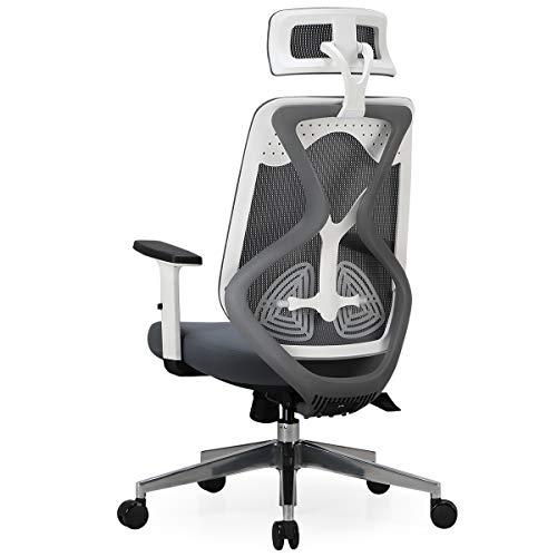Hbada Bürostuhl Ergonomischer Drehstuhl Mesh Stuhl Schreibtischstuhl Einstellbare Lordosenstütze mit verstellbar Armlehnen verstellbares Sitzkissen 125°Wippfunktion (Weiß)
