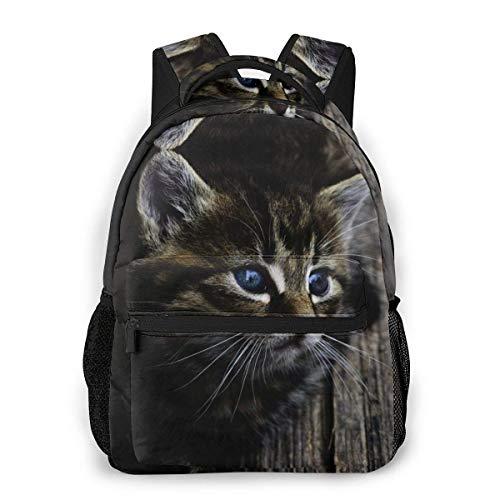 Lawenp Fashion Unisex Backpack Gray Kitten Bookbag Lightweight Laptop Bag for School Travel Outdoor Camping