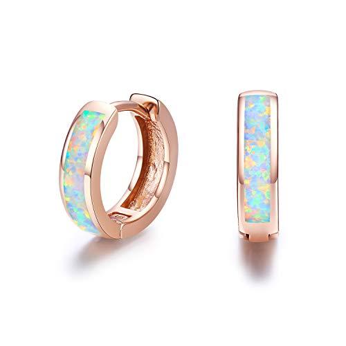 Damen Creolen Ohrringe,925 Sterling Silber Opal Ohrringe Kleine Creolen Kreis Ohrringe Kindertag Geschenke für Mama Frauen Kinder