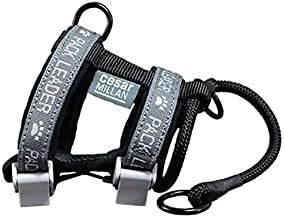 Cesar Millan Pack Leader Collar, Invented Designed Dog Collar, Harness Combination - Secures Proper Placement Slip Lead- Stops Dogs from Pulling Gently Lifts The Nose