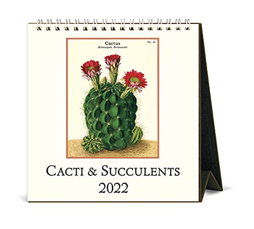 Cavallini 2022 - Calendario de escritorio, diseño vintage de suculentas (CAL22-12)
